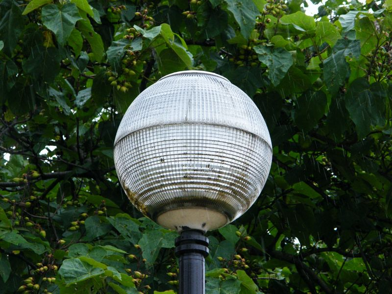 Original street lamp pictured here in Paris