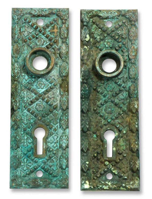 Pair of Detailed Bronze Back Plates