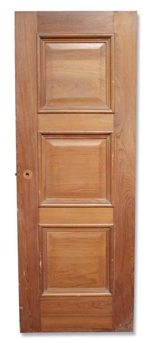Single Three Paneled Stained Door