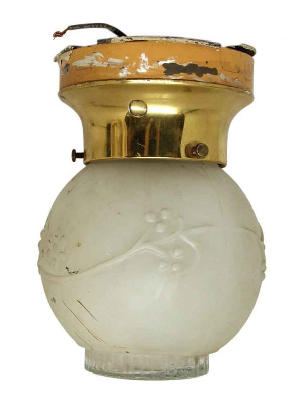 Frosted Glass Floral Globe with Brass Fixture