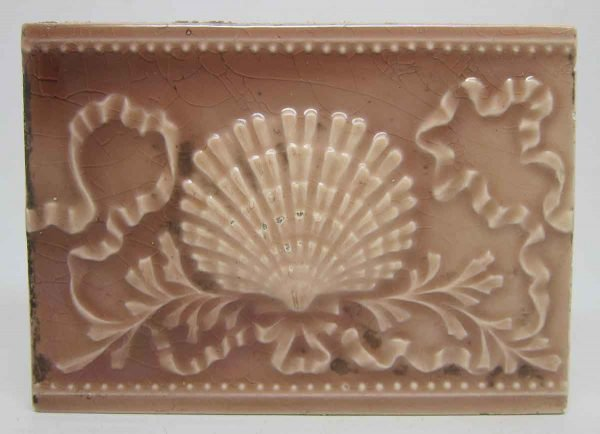Pink Shell Design Tile