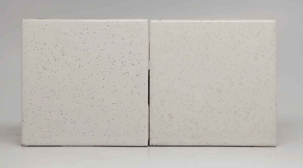 Pair of White Speckled Square Tiles
