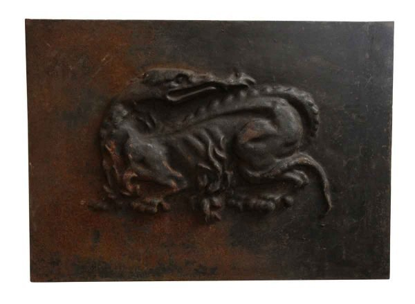 French Iron Dragon Fire Back - Screens & Covers