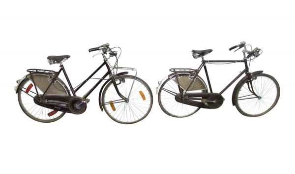 Raleigh Bicycle - Bicycles