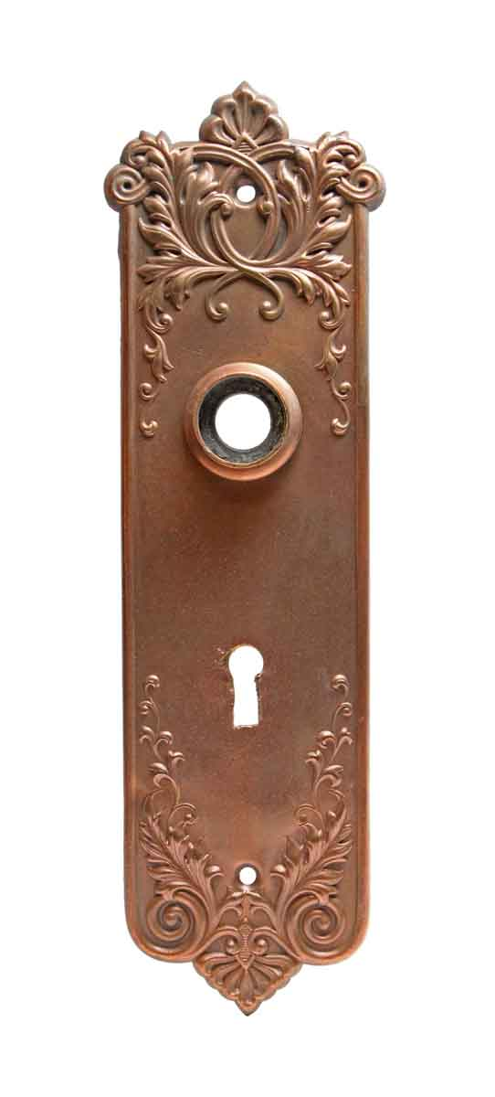 Back Plates - Victorian Pressed Brass Back Plate