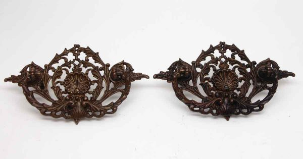 Cabinet & Furniture Pulls - Pair of Bronze Drawer Pulls with Shell Motif