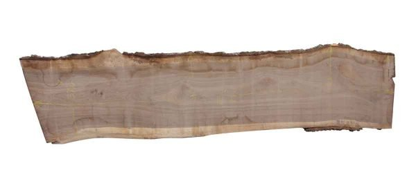 Live Edge Wood Slabs - 16 Foot Walnut Wood Slab 2H
