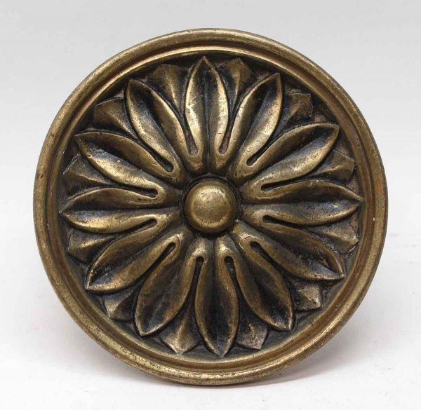 Cabinet & Furniture Knobs - Large Floral Brass Cabinet Pull