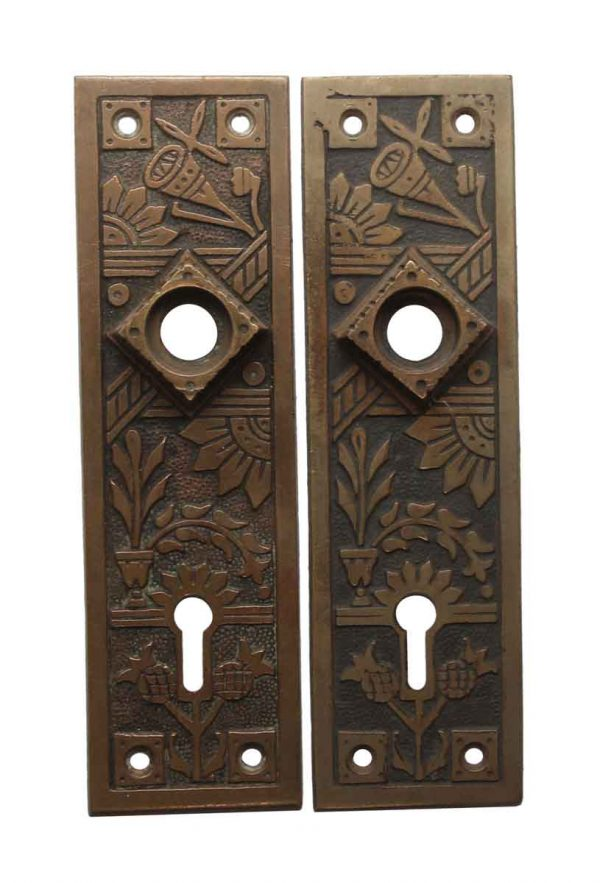 Back Plates - Pair of 5.75 in. Aesthetic Brass Door Back Plates